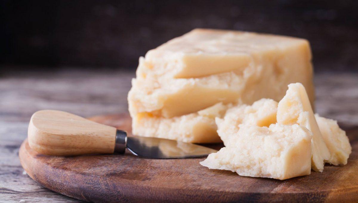La mungitura, fase cruciale per la produzione del Parmigiano Reggiano