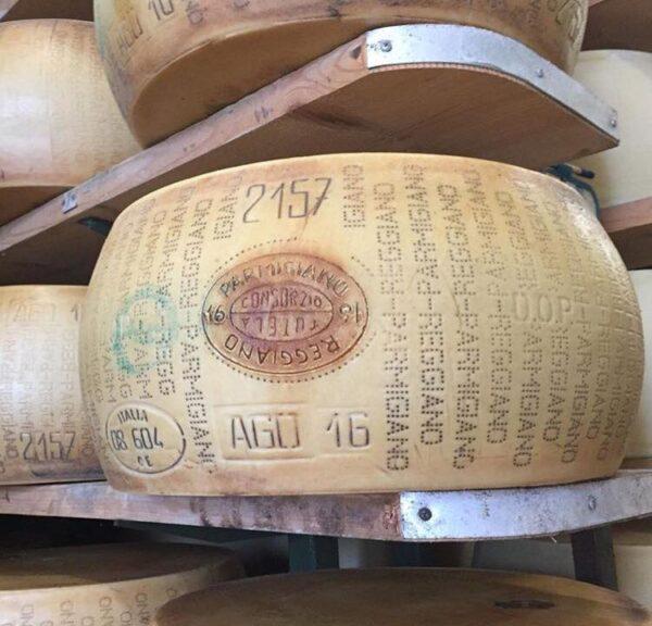 marchiatura di una forma garantita di Parmigiano Reggiano