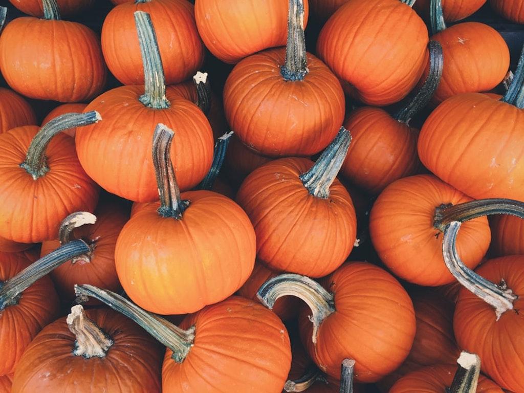 Quando pensi ad Halloween pensi alla zucca: e allora zucca sia! È un prodotto fantastico dal punto di vista nutrizionale