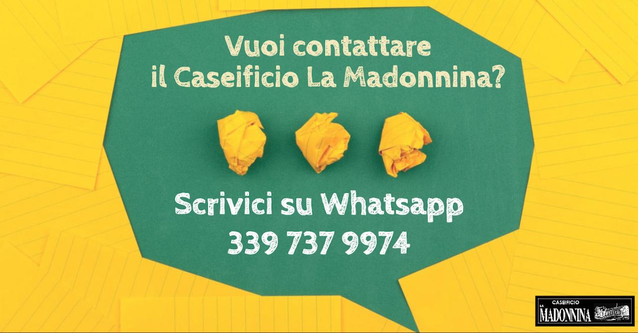 MAD - Contattaci su Whatsapp per spedizioni di Parmigiano Reggiano