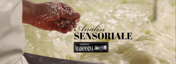 Analisi sensoriale Caseificio La Madonnina