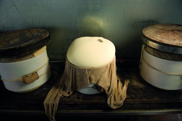 Parmigiano Reggiano come esperienza, caseificio la madonnina