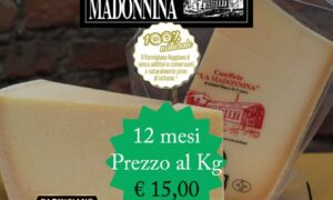 Parmigiano Reggiano stagionato 12 mesi