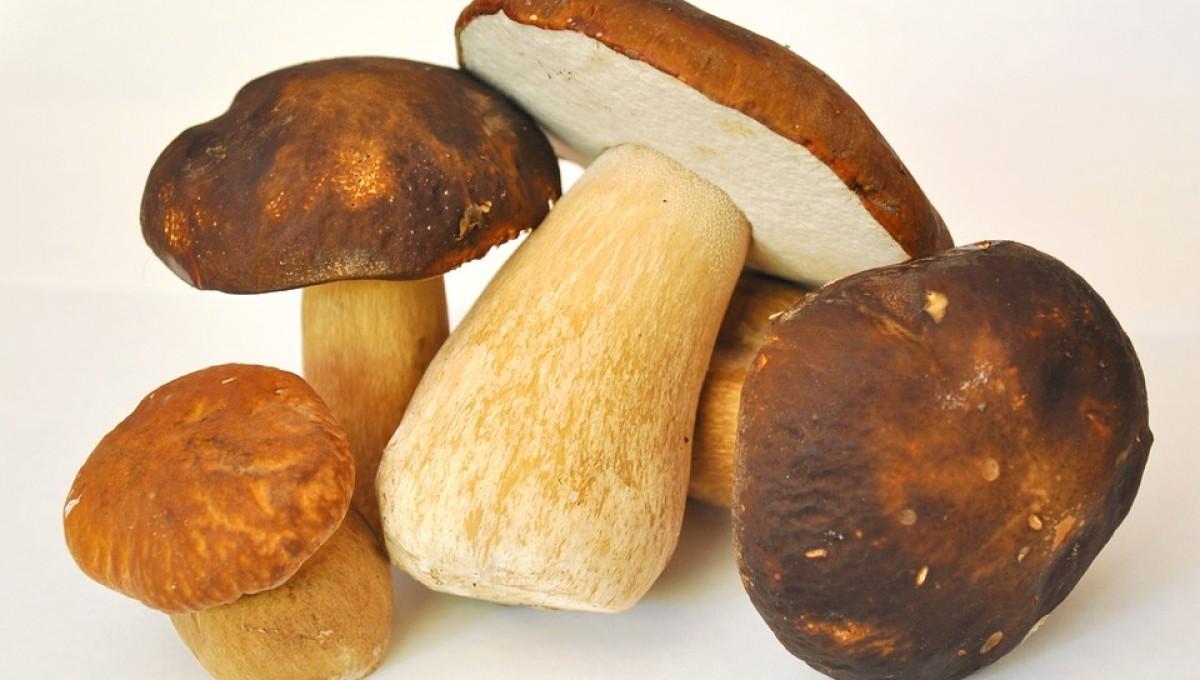 Ricetta: Polenta morbida con fonduta di Parmigiano Reggiano e funghi porcini